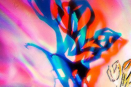 Flowers of Freedom Michel van de Langenberg